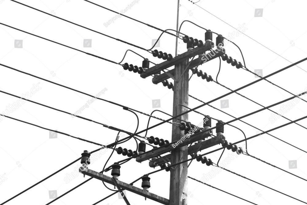 Electric Pole Wires Black And White On White Background