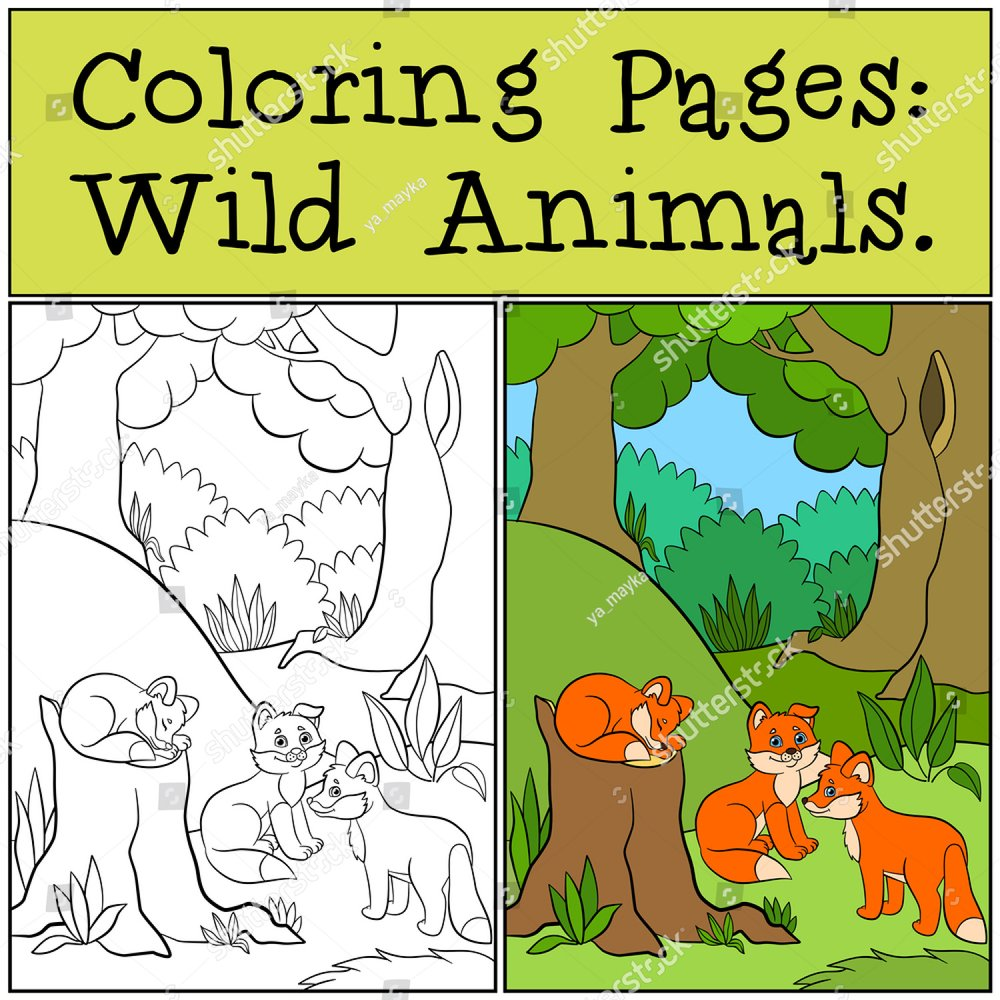 Coloring Pages: Wild Animals. Little cute monkey hangs on the tree ...