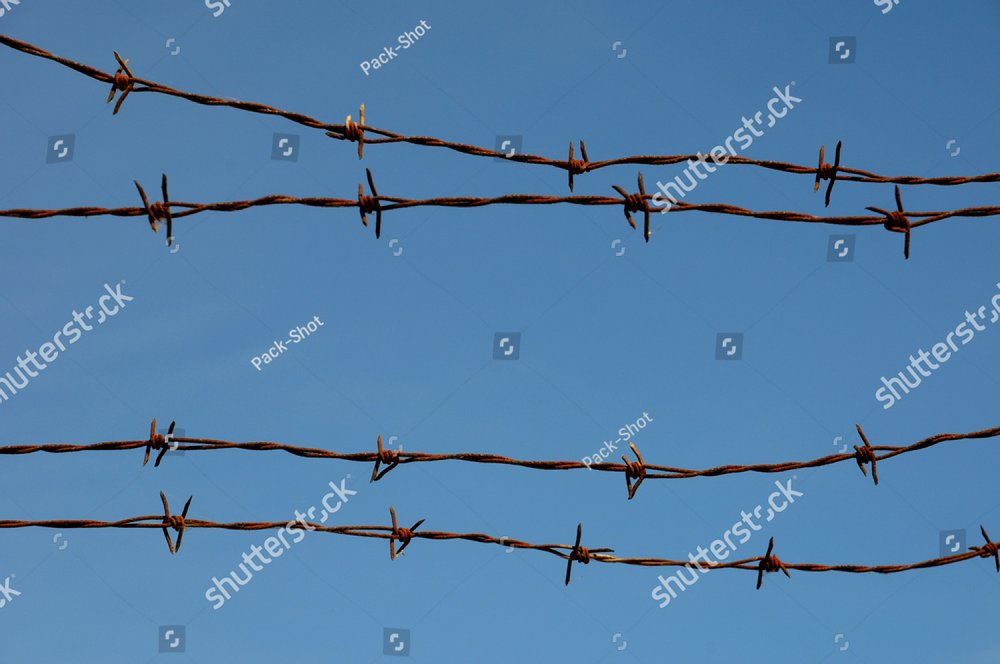 blue sky and barbed wire | EZ Canvas