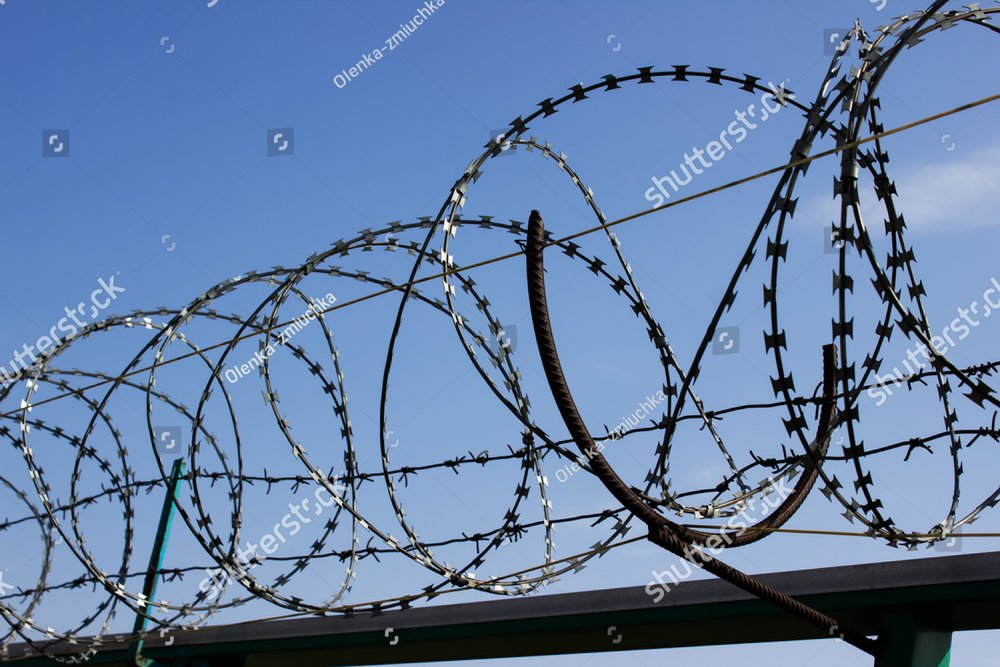 Barbed wire on a fence with blue sky on the background | EZ Canvas