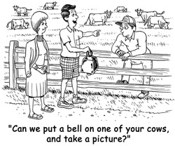 "The tourists ask the farmer, ""Can we put a bell on one of your cows, and take a picture?""."
