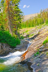 Rose Creek in Glacier National Park in Montana