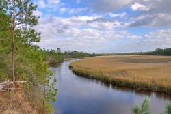 A View of the Marsh in Summer in South Carolina