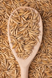 spoon with the oats on a background of oat