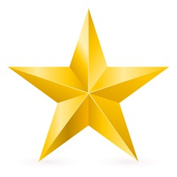 Shiny Gold Star. Form of first. Illustration for design on white background