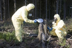 Two experts checking forest for radiation