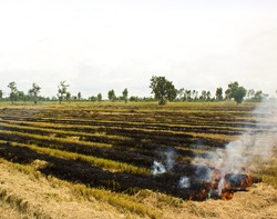 Fire was burning straw. Rice straw left over from the harvest was burned and global warming.