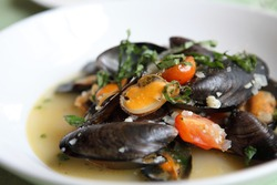 sea mussel with white wine