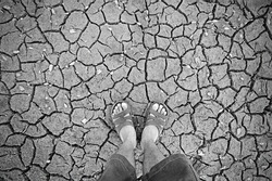 human standing on dry soil