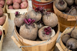 Beets in wooden baskets at market