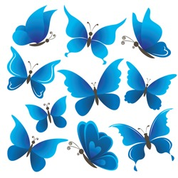 Set abstract blue butterflies with opened wings on white background. Vector