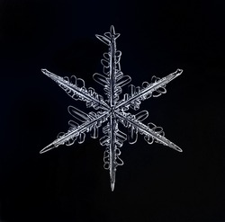 Natural Christmas snowflake on black background for design