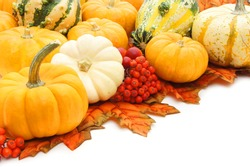 Corner arrangement of autumn pumpkins, leaves and gourds over white