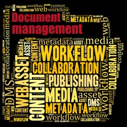 document management info-text graphics and arrangement concept (word cloud)