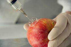 Sweet red apple in genetic engineering laboratory, gmo food concept.