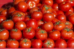 raw tomatoes on market
