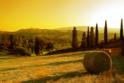 Sunset Tuscany landscape: San Gimignano on the background