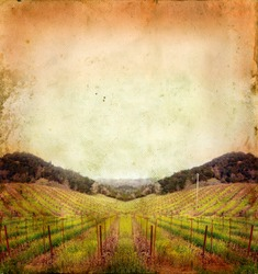 Napa Valley vineyard sunset on a grunge background.