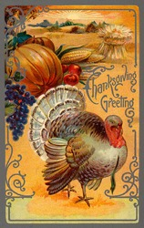 ''Thanksgiving Greeting'' - an ornate vintage illustration showing a bountiful harvest with a tom turkey - circa 1910