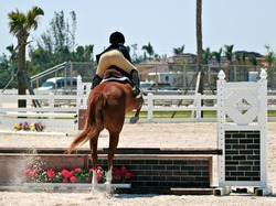 Equestrian obstacle course