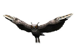 A flying horned owl isolated on white.