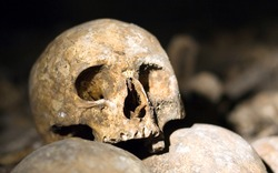 Closeup of an old skull in the catacombs of Paris, France