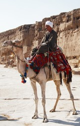 Arabian Bedouin riding a camel near Great Pyramids in Giza, Cairo, Egypt - editorial
