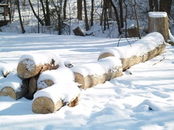 lumber covered with snow