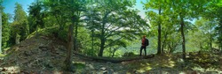 panorama, hiking man in Black Forest, Germany