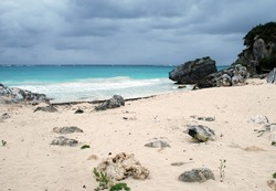 Rocky Beach at Tulum