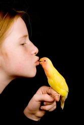 little girl is kissing lovebird on black background
