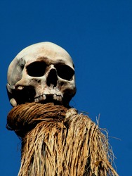 Human Skull on Pike against bright blue sky