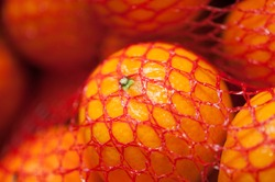 Closeup of a bag of Clementines  at the Eastern Market in Washington DC