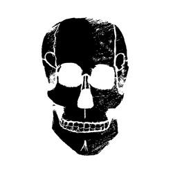 011430593c65 Skull vector. Skull black and white. Skull doodle art.