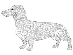 Dachshund Coloring Book For Adults Vector Illustration Anti Stress Adult Dog