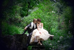 the newly married couple sitting on the rock in the forest