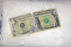 dollar in the ice