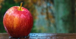Conceptual photography-Apple in the rain