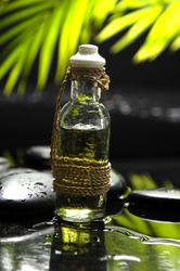 bottle of essential oil and green plam leaf with stones