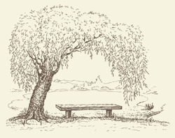 Vector illustration. Landscape sketch of the village form of the old wooden bench under a willow tree by the lake
