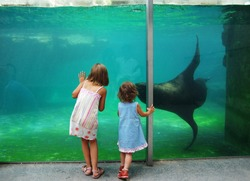 Children near zoo aquarium