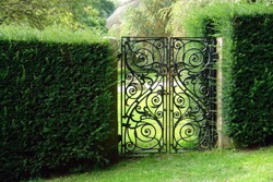 Classical design black wrought iron gate in a beautiful green garden