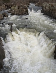 Rapids on the Potomac River, near the Great Falls outside of Washington, D.C.