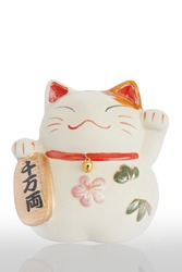 Japan lucky cat with reflect isolated on white background
