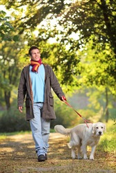 A boy and his dog (Labrador retriever) walking in the park in autumn