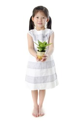Concept of little girl holding a plant on white background