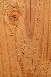 Background Texture Of A Freshly Cut Plank Of Wood