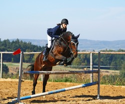 Female jockey with purebred horse, jumping a hurdle