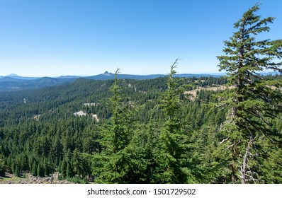 Redwoods national Park, California. Redwood Creek Overlook. Outstanding views of its namesake drainage as well as the Pacific Ocean in the distance.