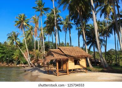 Reed hut on a sandy beach. Coconut palms against the clear blue sky.
